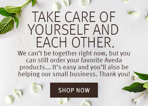 Salon_A-Commerce_Homepage_Pop-up_Banner_Option_1