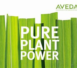 Aveda logo natural products